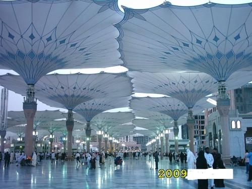 new madinah